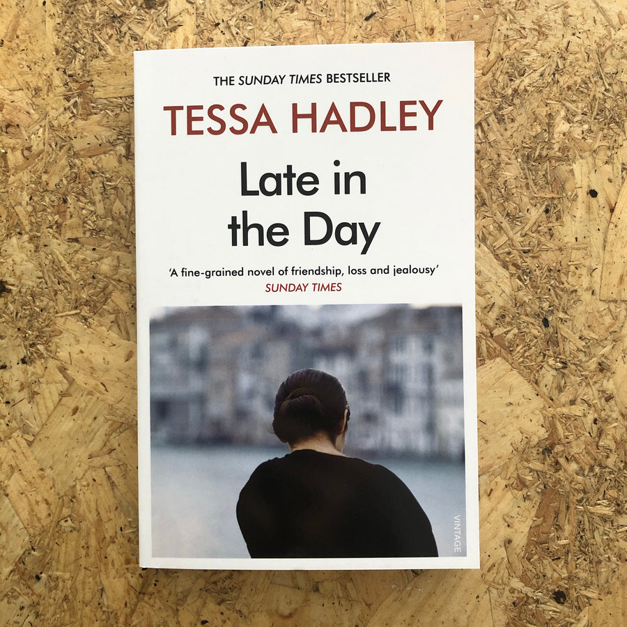 Late In The Day | Tessa Hadley