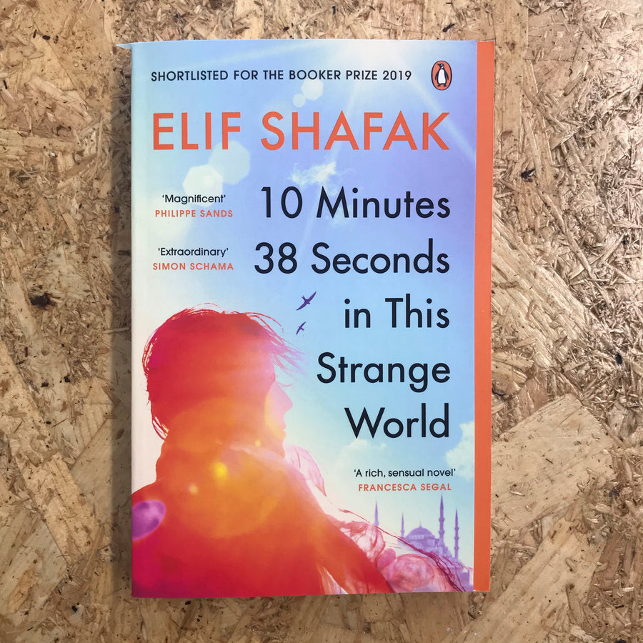 10 Minutes 38 Seconds in this Strange World | Elif Shafak