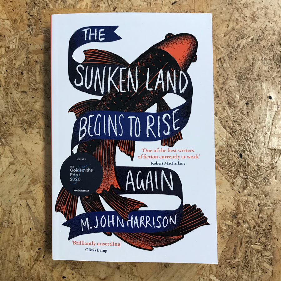 The Sunken Land Begins To Rise Again | M. John Harrison