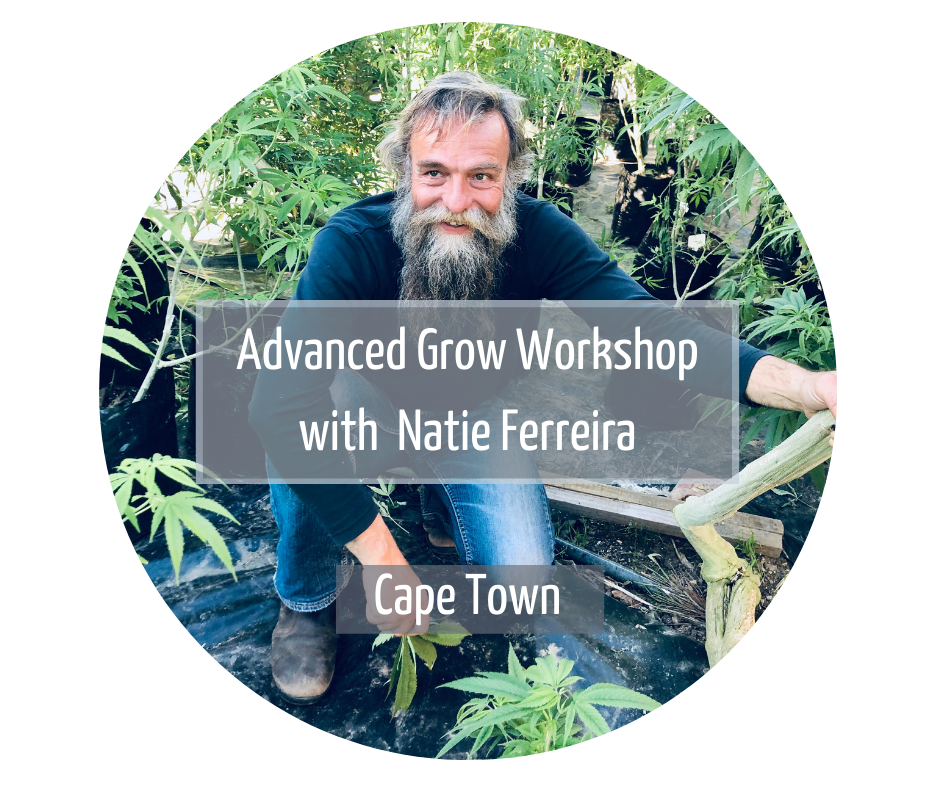 Advanced grow workshop Cape town