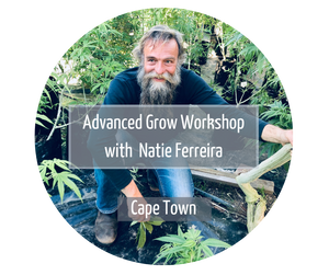 grow workshop cape town