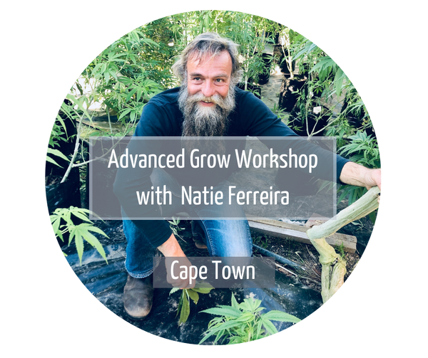 Advanced Grow Workshop with Natie Ferreira Cape Town