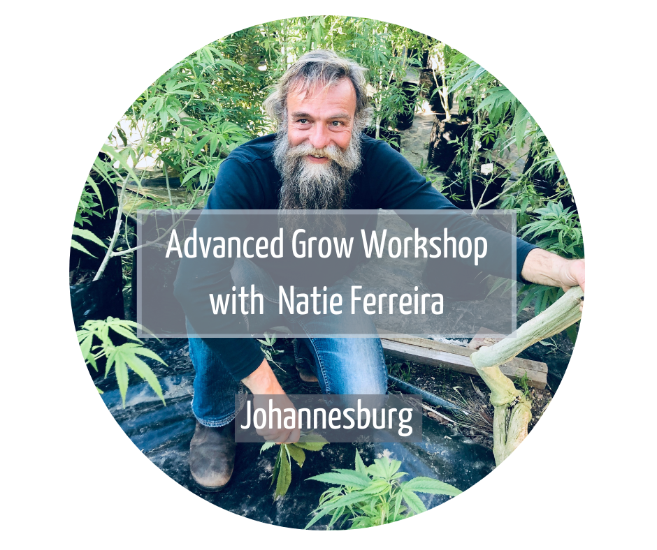 Advanced Grow Workshop with Natie Ferreira Johannesburg