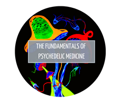 The Fundamentals of Psychedelic Medicine