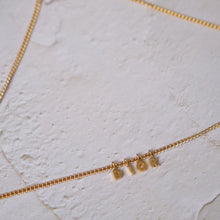 Load image into Gallery viewer, Christian Dior Logo Necklace