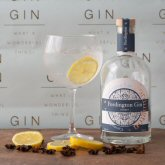 Fordington Gin - Putting Dorset on the Map