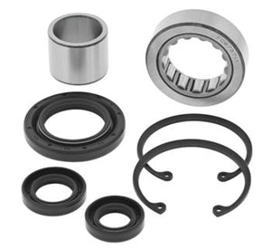 Inner Primary Bearing/seal kit: '94-'04 Big Dog, '95-up American Ironhorse, H-D: All Balls Racing Inner Primary Bearing Kit