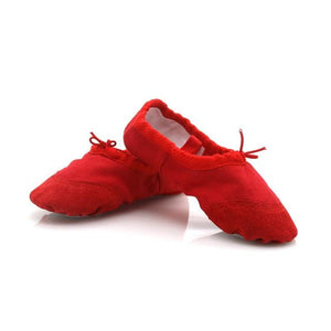 Dance Pointe Shoes - Les Value