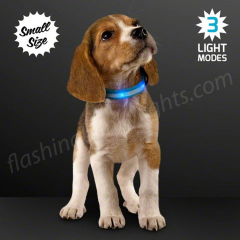 Blue LED Dog Collar, Adjustable - Size Small