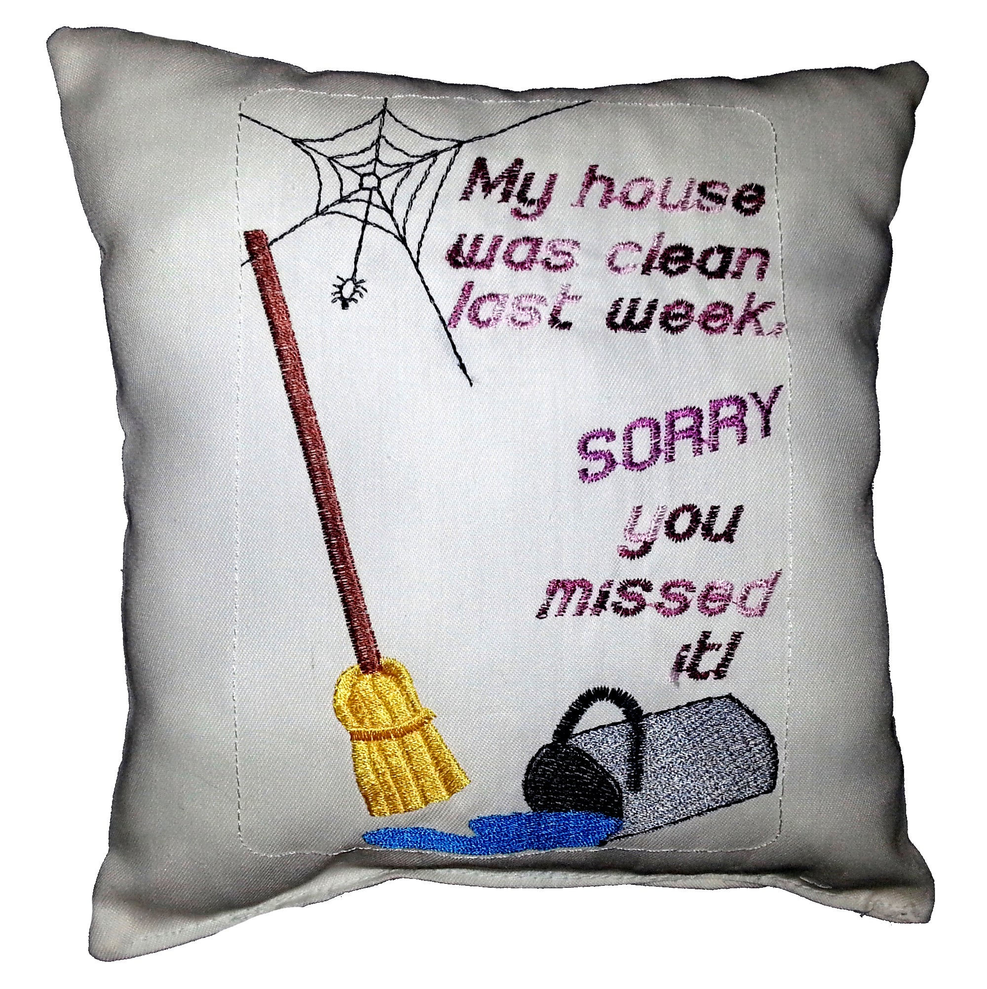 My house was clean last week, sorry you missed it Cushion