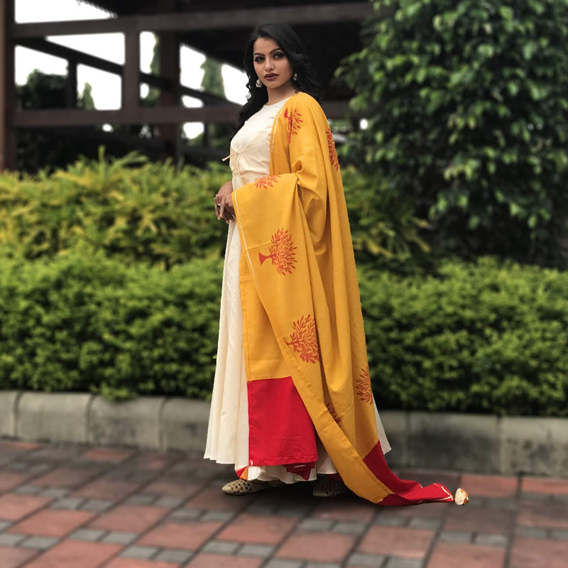 Chanderi gown with dupatta