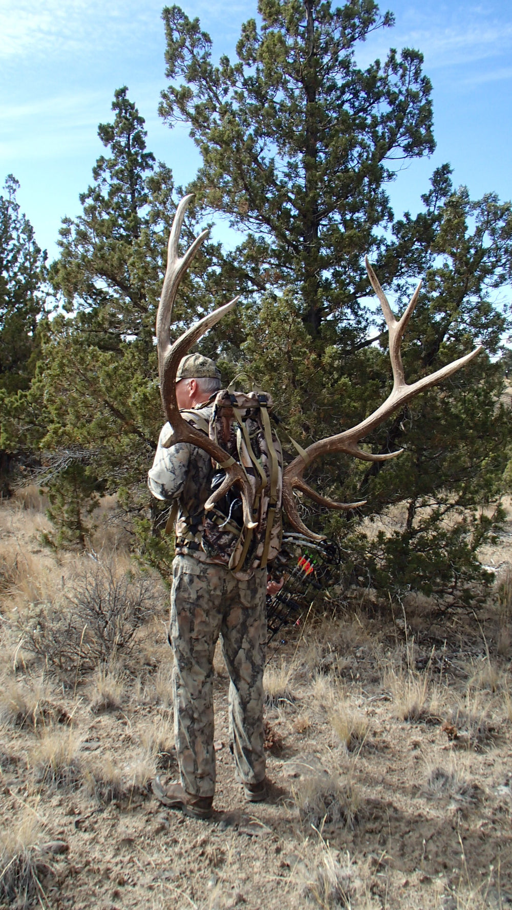 Elk Rack on Orion Back pack