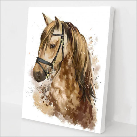 The Horse Paint By Number Kit