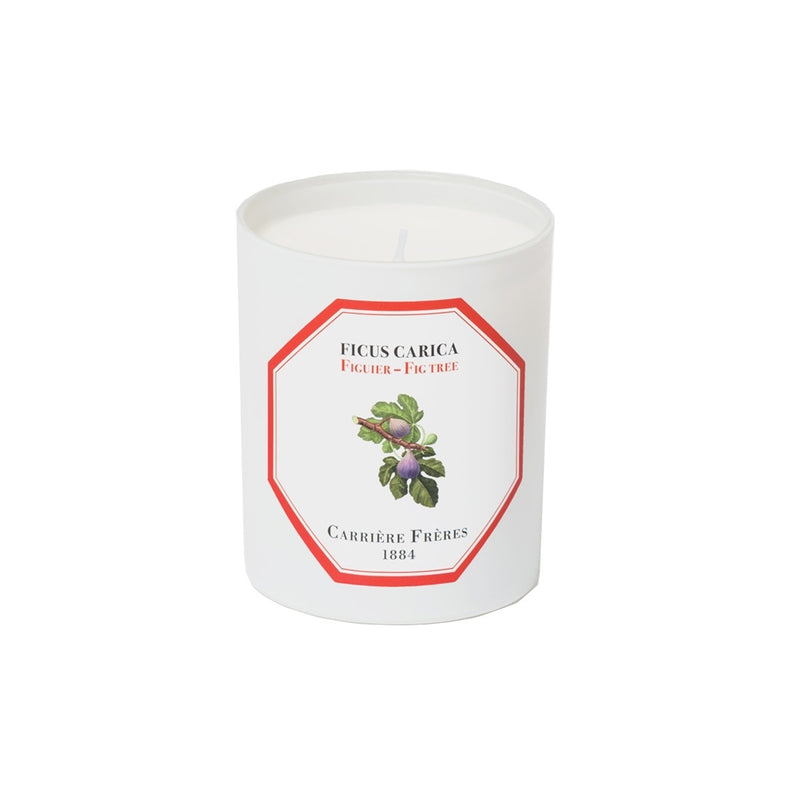 Carriere Freres Fig Candle 185g