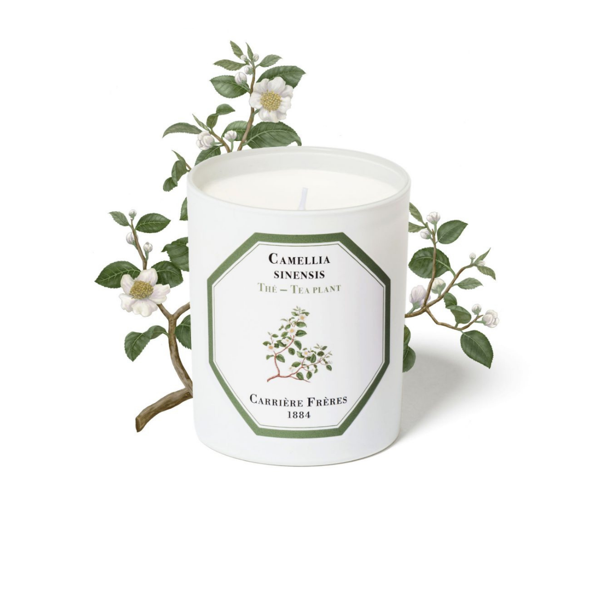 Carriere Freres - Tea Plant Candle 185gr