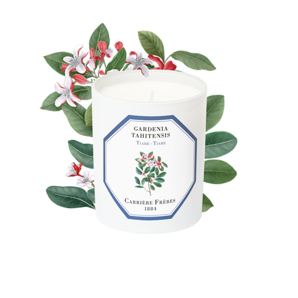 Carriere Freres Tiare Candle 185g