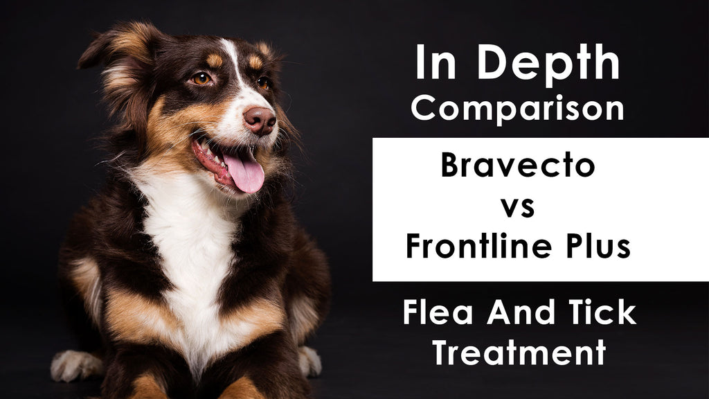 in depth comparison bravecto vs frontline plus