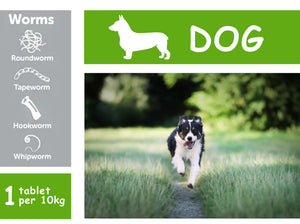 Drontal Plus Tablets for Dogs (Dewormer) - 20 TABS