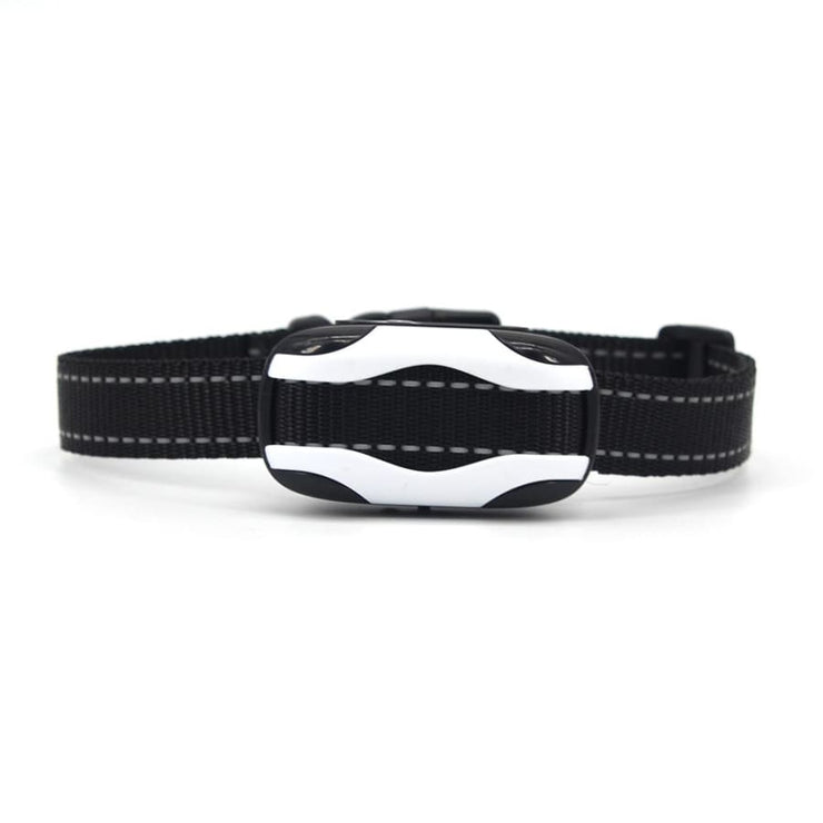 Dog Training Collar with remote Shock or No Shock color white/black - Remote Control Dog Training Collar