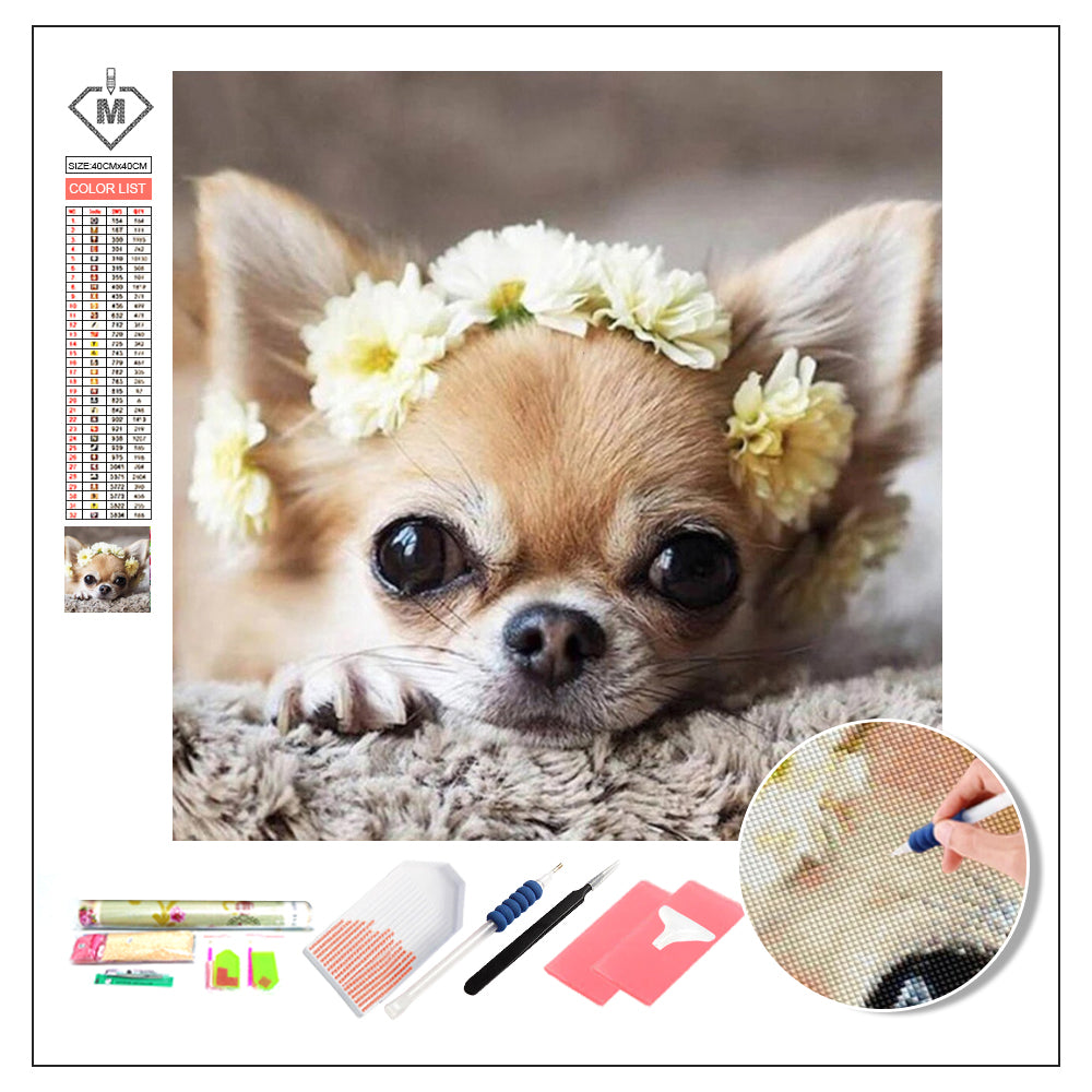 DIY Diamond Painting Kit  - Dog Chihuahua