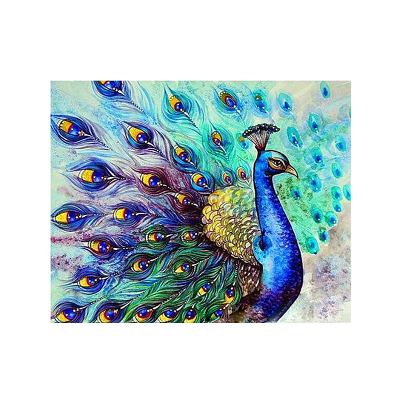 "DIY Painting By Numbers - Peacock flaunting (16""x20"" / 40x50cm)"