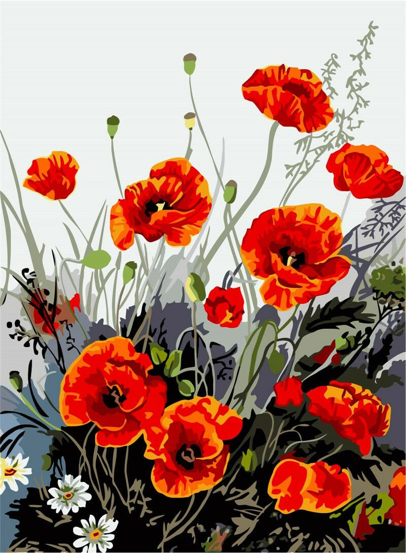 "DIY Painting By Numbers -Poppy Flower (16""x20"" / 40x50cm)"