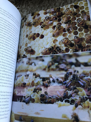 Book, Backyard Bees, a guide for the beginner beekeeper.