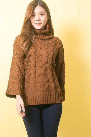 Sequea Knit Pullover in Brown