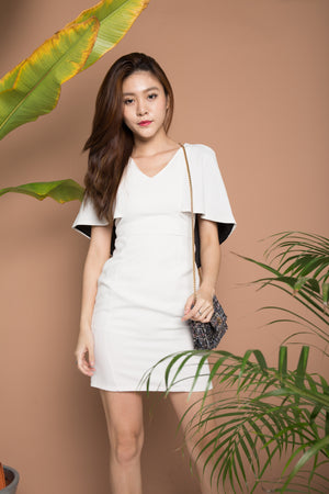 Rebecka Flare Corporate Dress