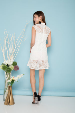 Jerlyn Crochet Lace Dress in White