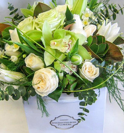 White & Lime Posy in a box