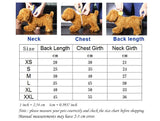 kirt coat Spring and summer new dog Chihuahua Yorkshire dress cute dog dress pet cat clothes s