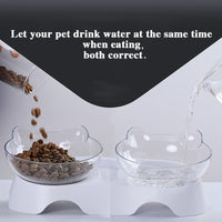 Pet Cat Bowl Dual-use Transparent Bowls Protect Cervical Vertebra Tilt Mouth Drinking Water Food Storage Bowl For Dogs Cats