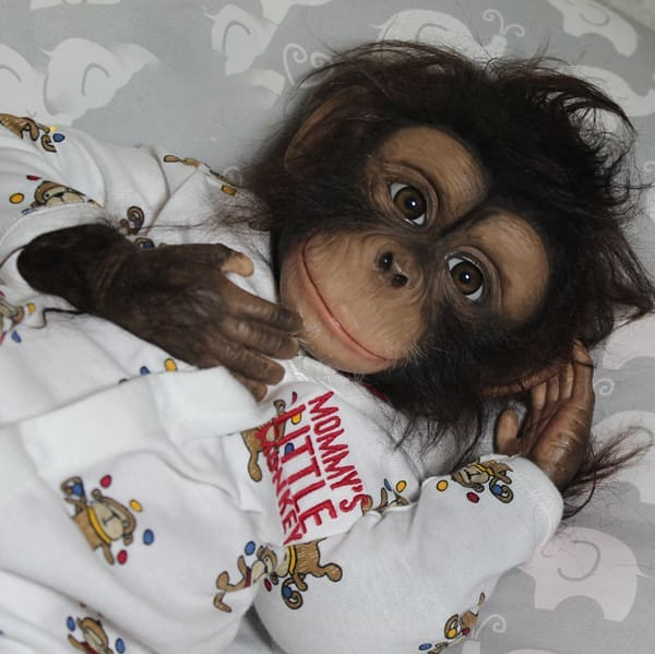 Lagass  Poseable Hugging Monkey Doll