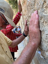 Load image into Gallery viewer, Israel Professionals in Aging Tour - October 4 to 19, 2021