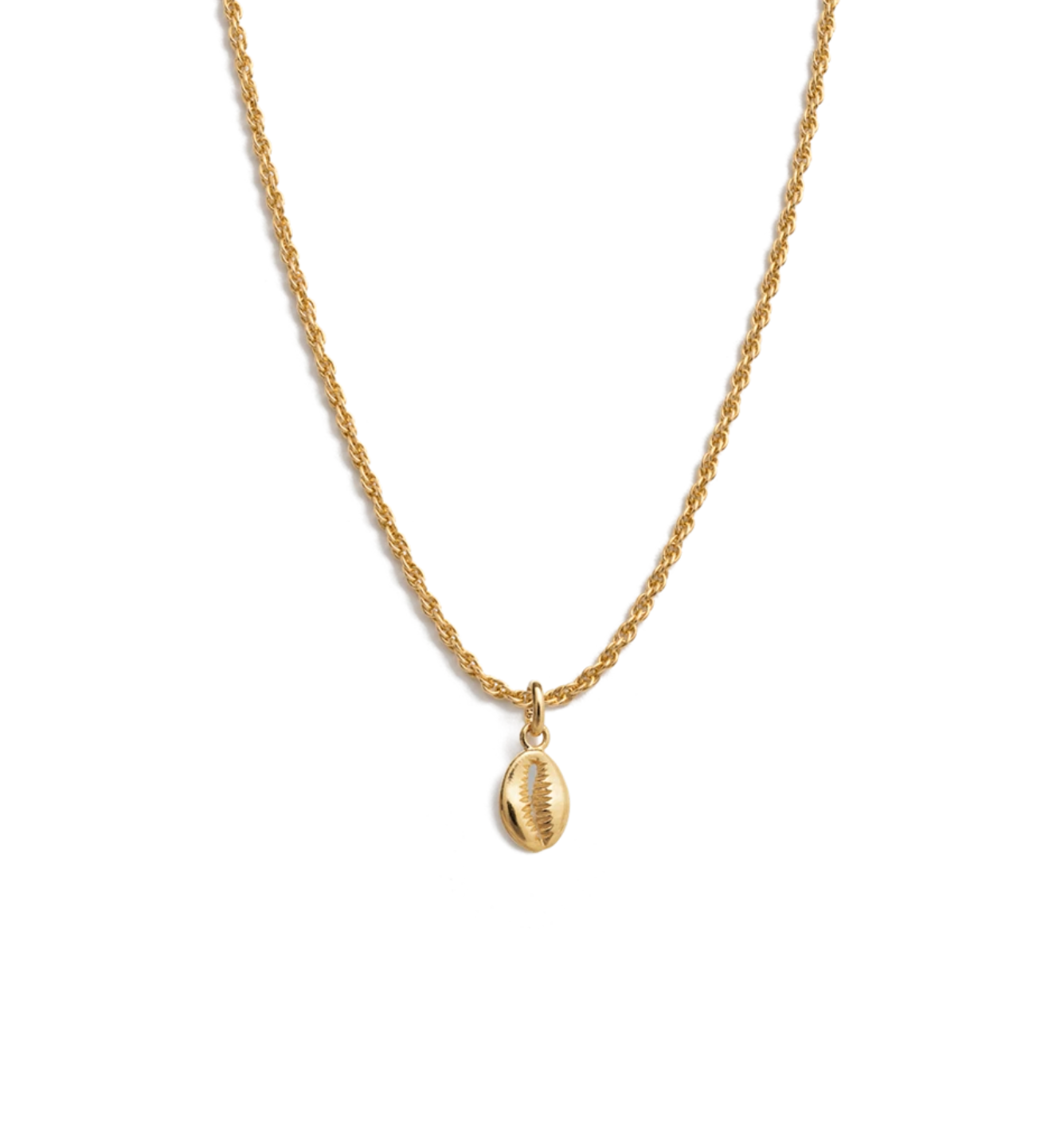 Kirstin Ash Cowrie Shell Charm Necklace - Gold