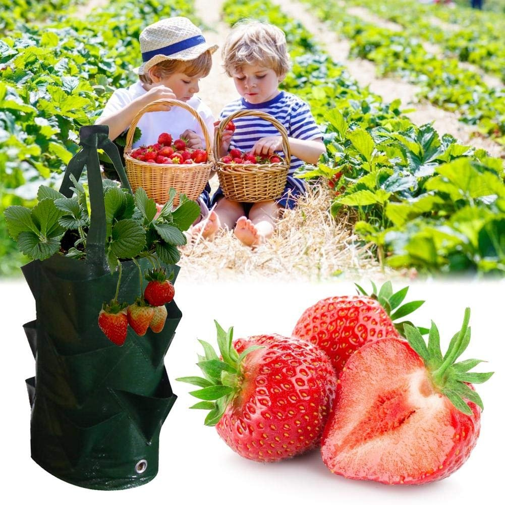 Multi Pockets Potato Strawberry Planter Balcony Strawberry Grow Bag Herbs Vegetables Garden