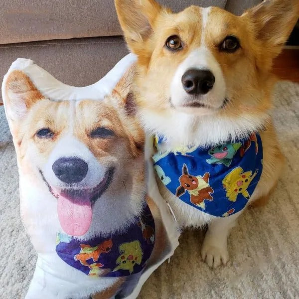 Custom Pet Photo Pillow - Best Gift for Pet Lovers