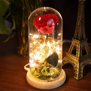 Para Ella Preserved Fresh Rose Flower with Fallen Petals in Glass Dome on Wooden Base