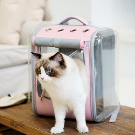 Foldable Transparent Dog Pet Cat Backpack