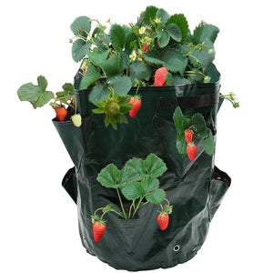 8 Pockets Potato Strawberry Planter Balcony Strawberry Planting Bag Herbs Vegetables Garden