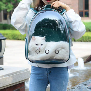 5 Colors Breathable Transparent Pet Travel Backpack Dog Cat Carrier Shoulder Bag