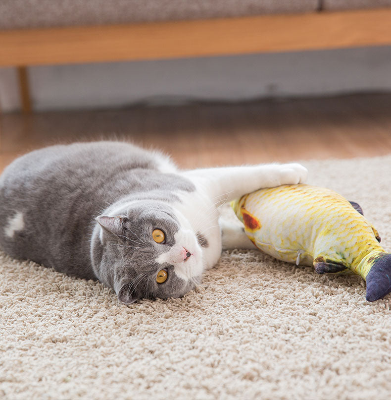 Dog Toy Plush Toy Cat Plush Fish Toy Pillow
