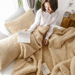 Pure Color Lambskin Berber Fleece Quilt Three-piece Coral Fleece Warm Double-layer Thick Single Double Pillowcase Quilt Cover