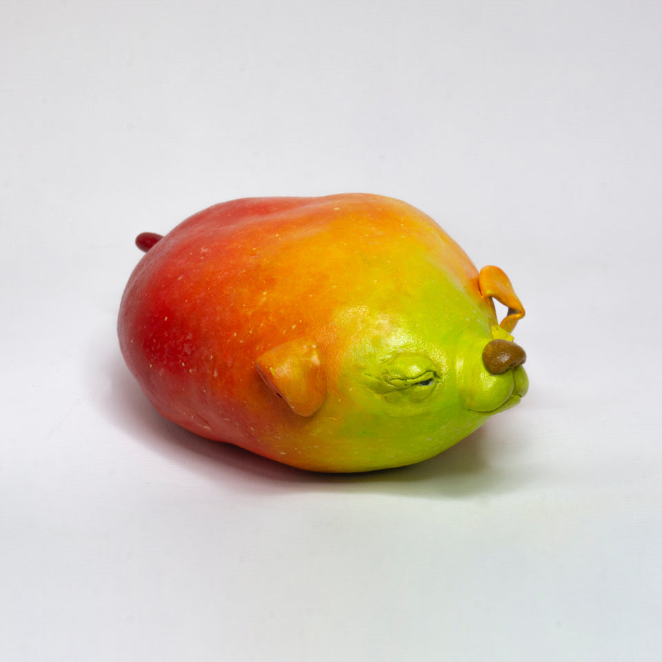 Mango Dog by Stephen Morrison