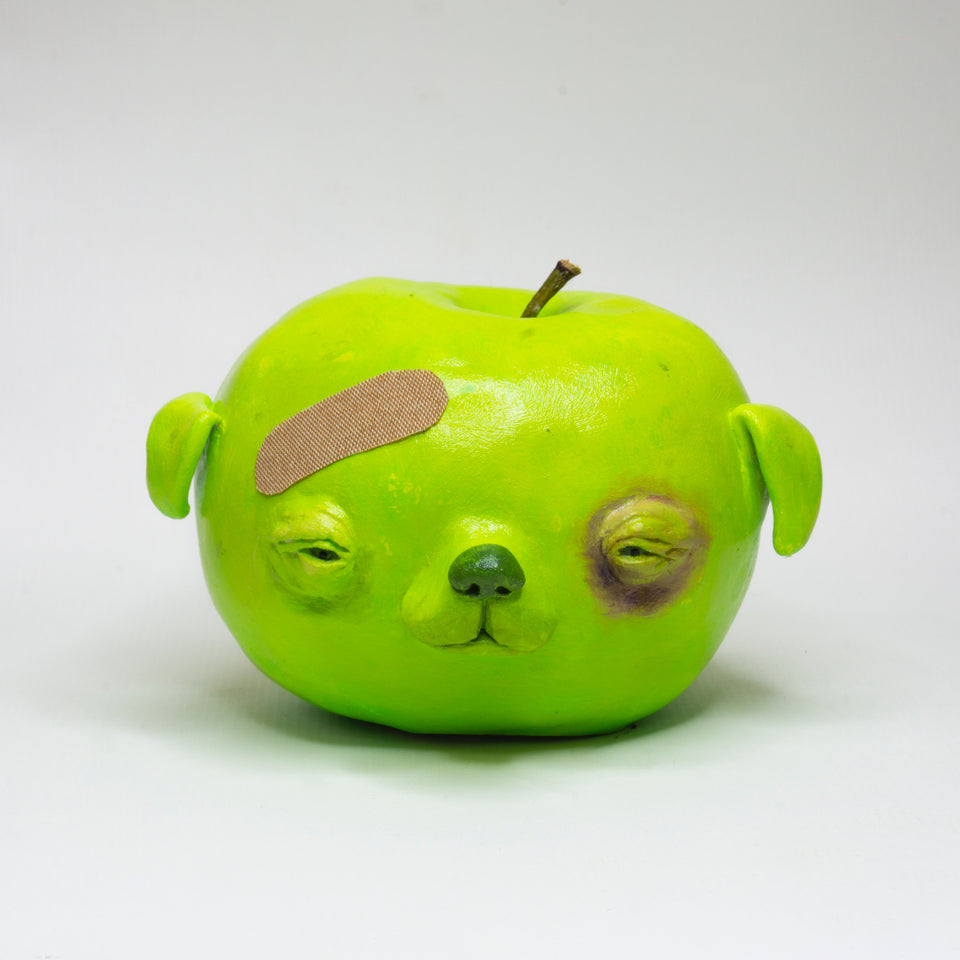 Apple Dog by Stephen Morrison