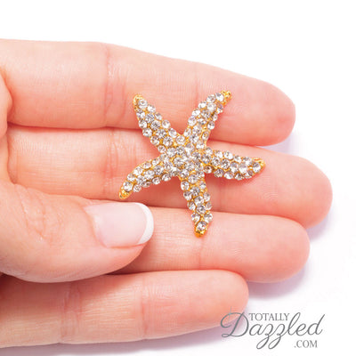 Gold Starfish Ribbon Buckle in Hand
