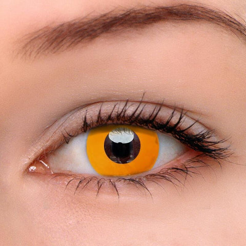 Pumpkin Orange Colored Contact Lenses | Lamon Beauty