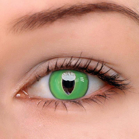British Shorthair Green Colored Contact Lenses | Lamon Beauty