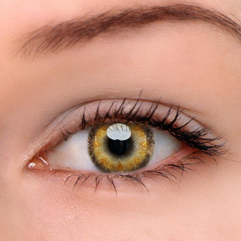Radial Brown Colored Contact Lenses | Lamon Beauty